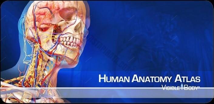 human anatomy atlas mega atlas 3d del cuerpo humano