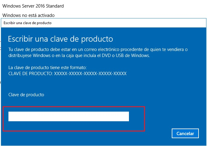 licencia windows server