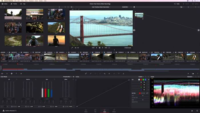 Davinci-Resolve-Studio para mac full mega - descargar davinci resolve studio premium full