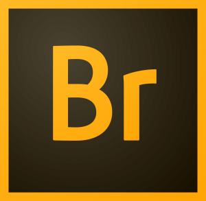 adobe bridge cc 2019 full mega - descargar bridge cc 2019