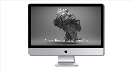 Solid Angle Cinema4D For Arnold 2.4.4 Download Free