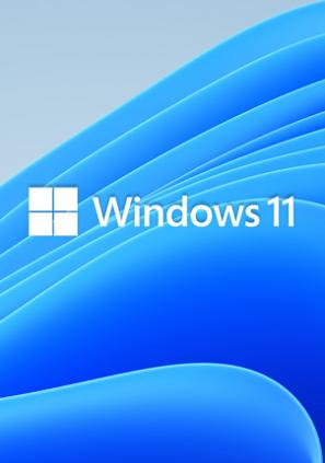 licencia windows 11 pro